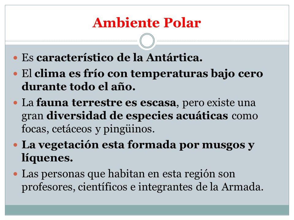 Ambiente Polar Es característico de la Antártica.