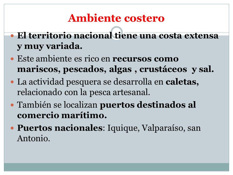 Ambiente costero El territorio nacional tiene una costa extensa y muy variada.