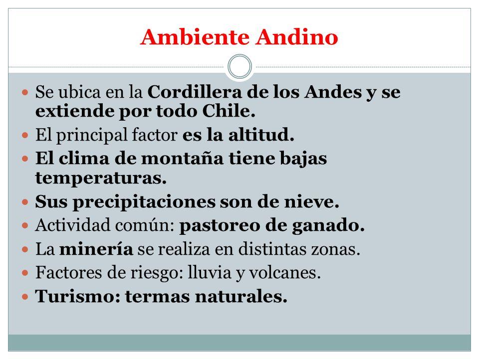 Ambiente Andino Se ubica en la Cordillera de los Andes y se extiende por todo Chile. El principal factor es la altitud.