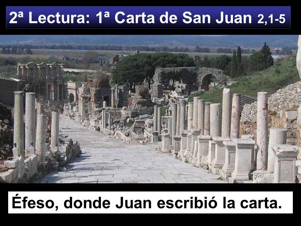 2ª Lectura: 1ª Carta de San Juan 2,1-5