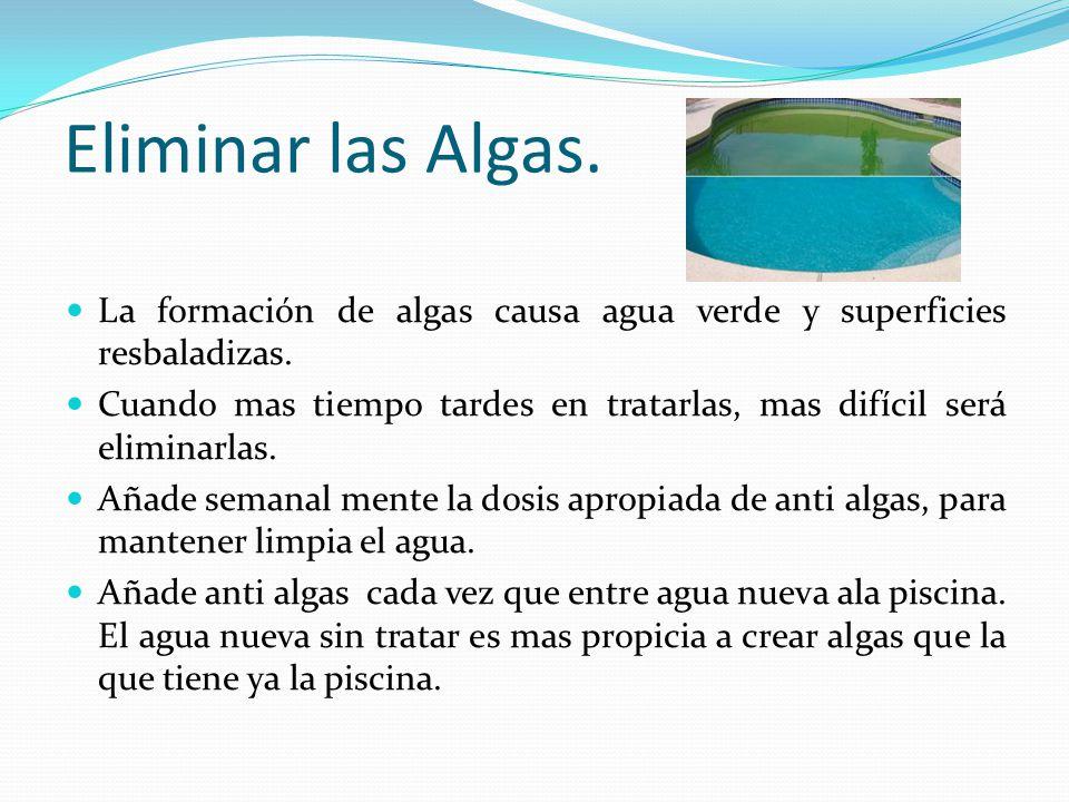 Piscinas y fuentes equipo 8 ppt video online descargar for Algas en piscinas de plastico