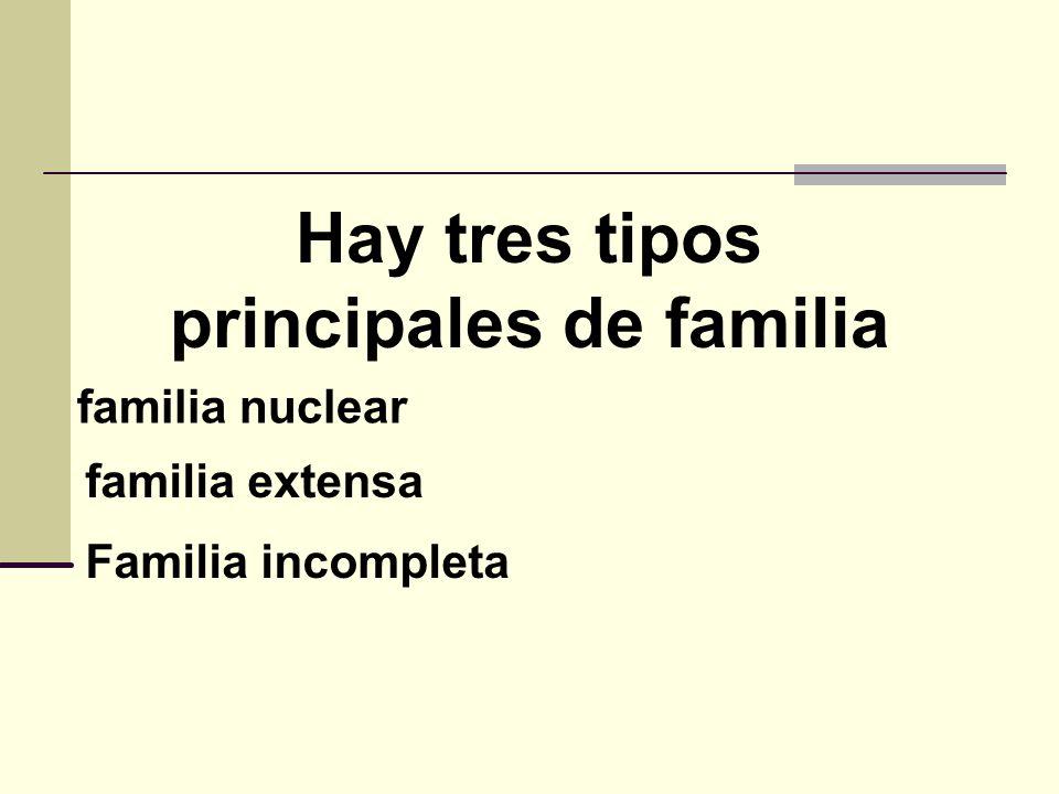 La familia y su funciones ppt video online descargar Tipos de familia nuclear