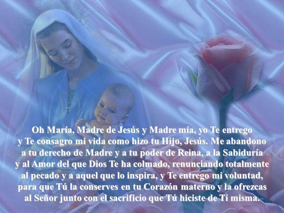 Oh María, Madre de Jesús y Madre mía, yo Te entrego