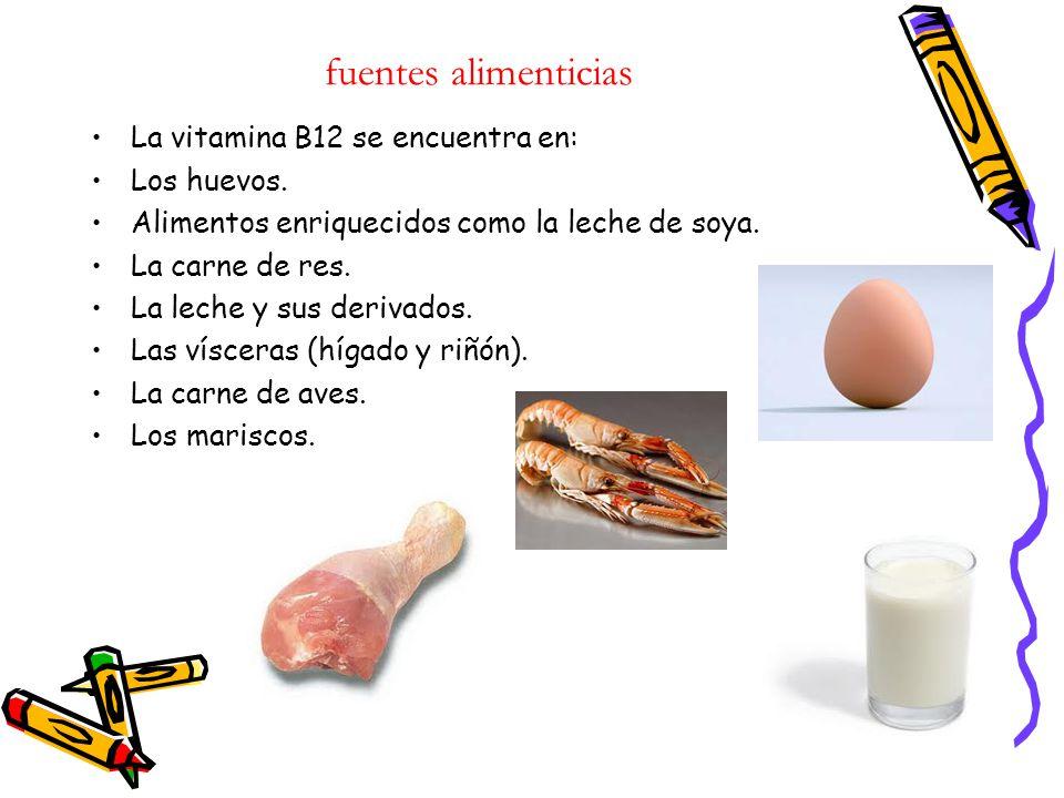 Vitamina b12 daniel fernando tique yara curso 901 biolog a ppt descargar - En que alimentos esta la vitamina b12 ...