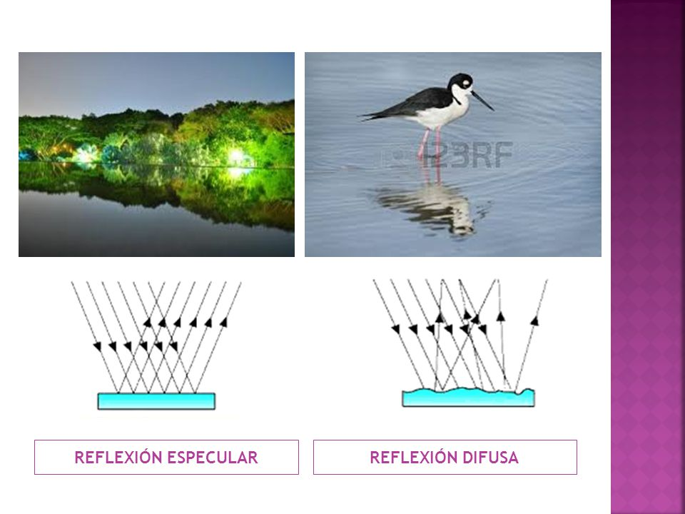 REFLEXIÓN ESPECULAR REFLEXIÓN DIFUSA