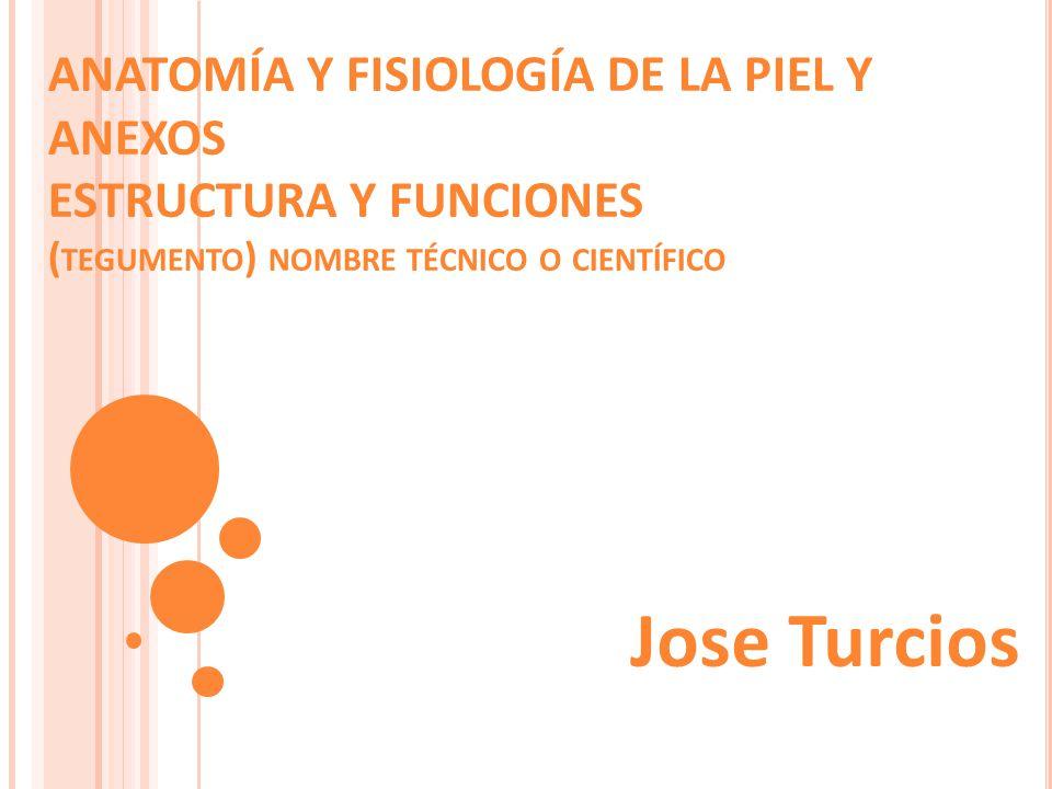 ANATOMÍA Y FISIOLOGÍA DE LA PIEL Y ANEXOS ESTRUCTURA Y FUNCIONES (tegumento) nombre técnico o científico