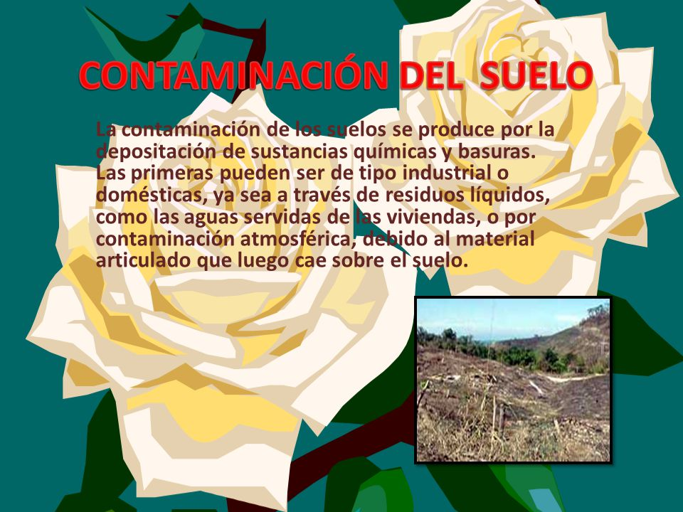 Que es la contaminacion ambiental ppt descargar for Sustancias del suelo