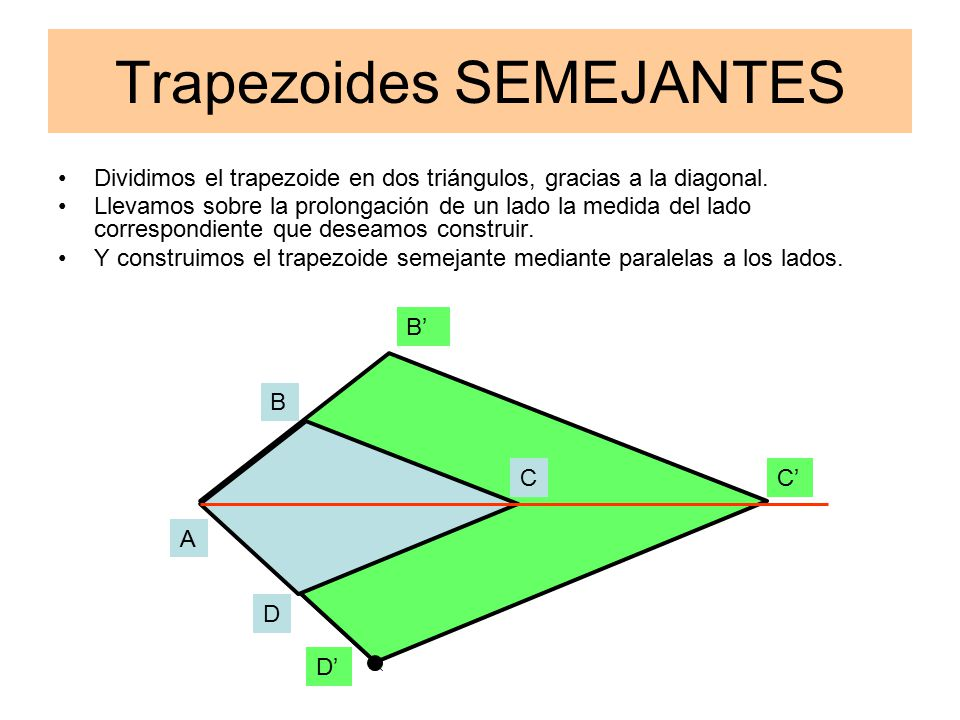 Trapezoides SEMEJANTES