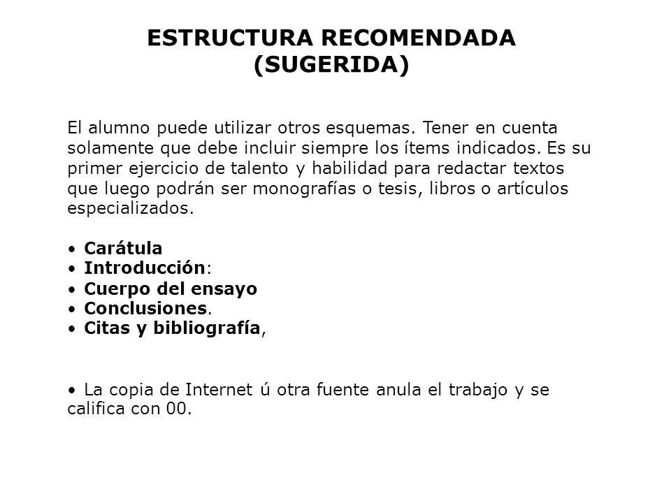 ESTRUCTURA RECOMENDADA (SUGERIDA)