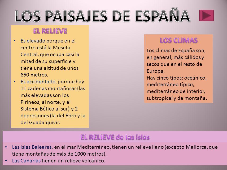 LOS PAISAJES DE ESPAÑA EL RELIEVE LOS CLIMAS EL RELIEVE de las islas