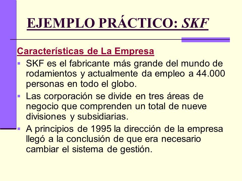EJEMPLO PRÁCTICO: SKF Características de La Empresa