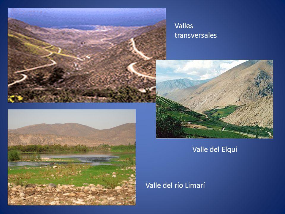 Valles transversales Valle del Elqui Valle del río Limarí