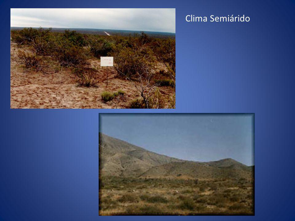 Clima Semiárido