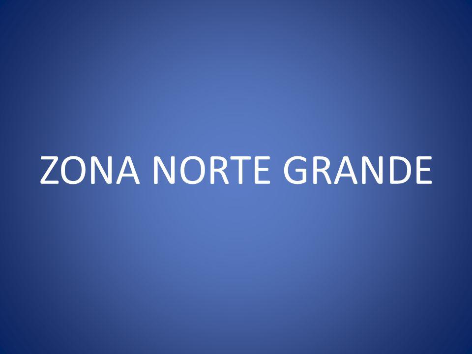 ZONA NORTE GRANDE