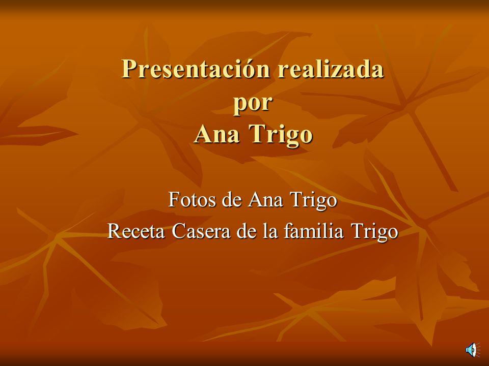 Presentación realizada por Ana Trigo