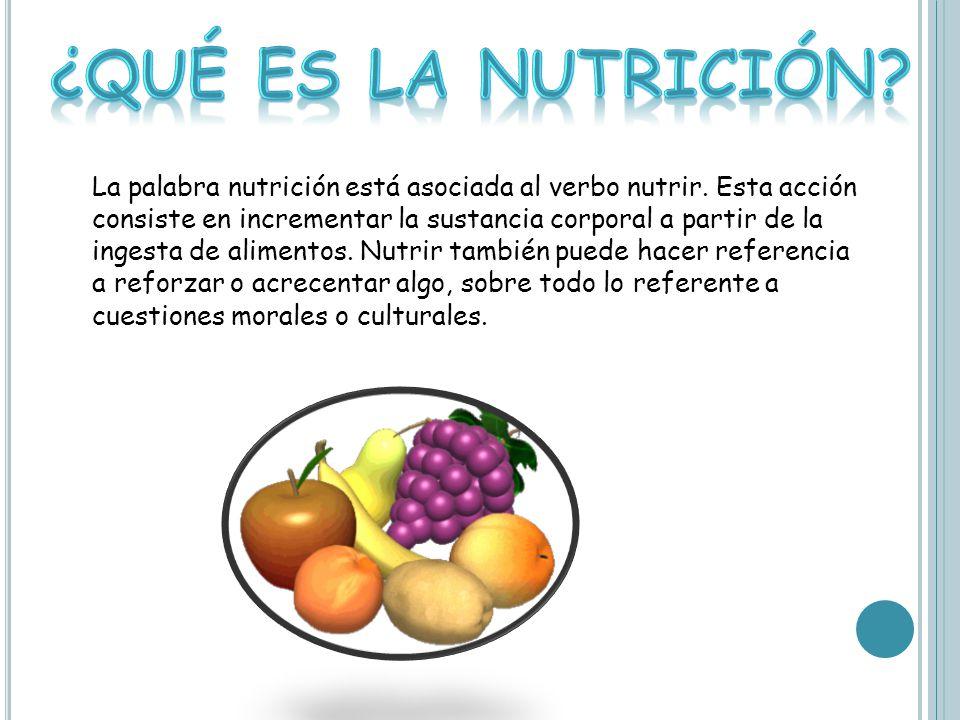 ¿Qué es la nutrición