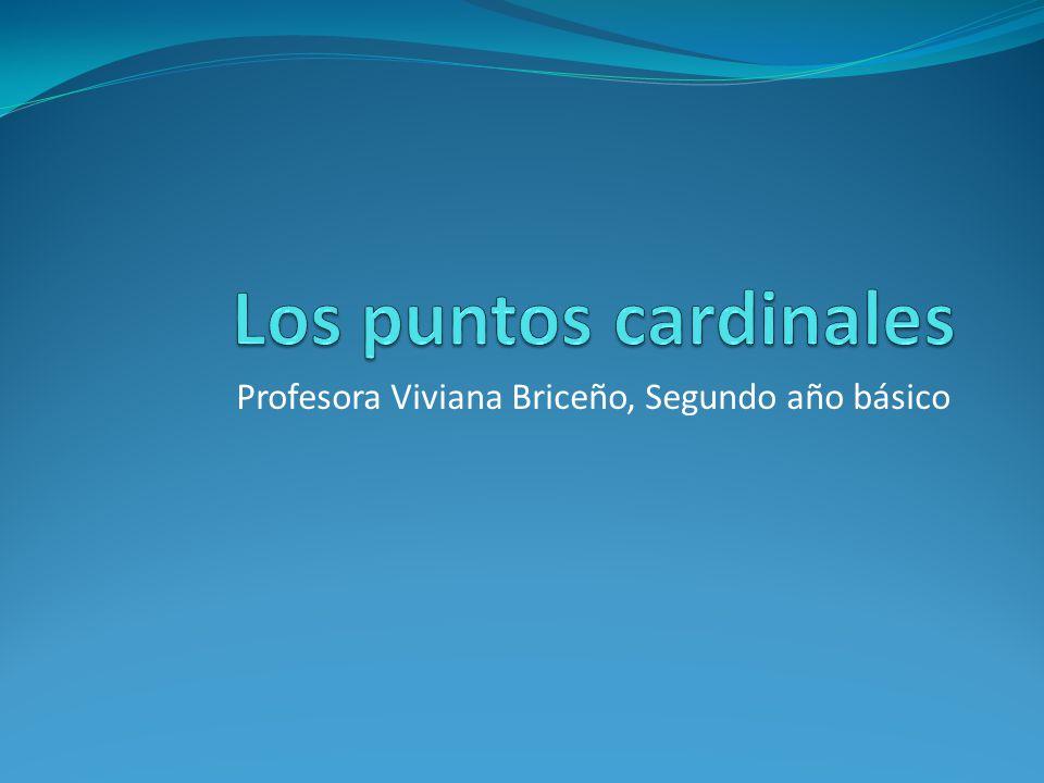 Profesora Viviana Briceño, Segundo año básico