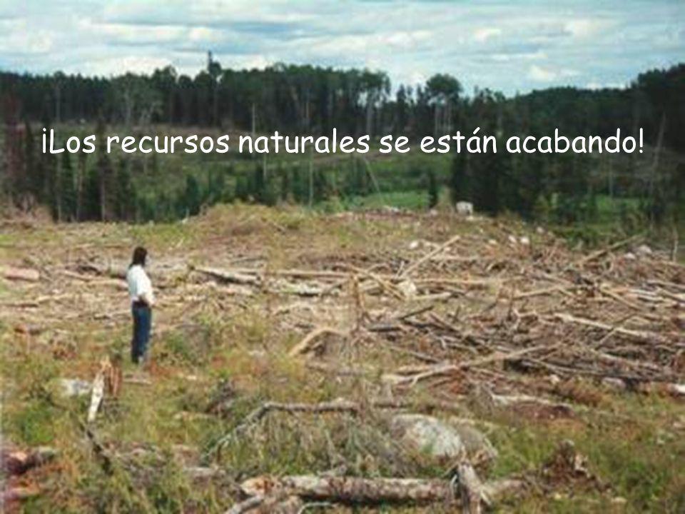 ¡Los recursos naturales se están acabando!
