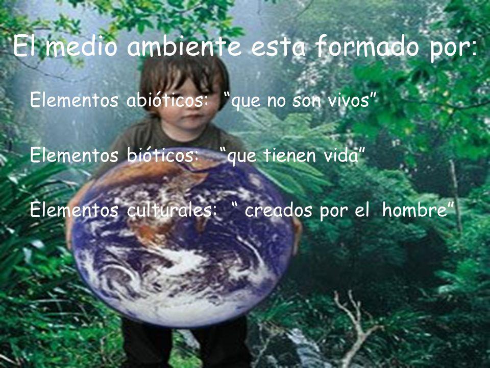 El medio ambiente esta formado por: