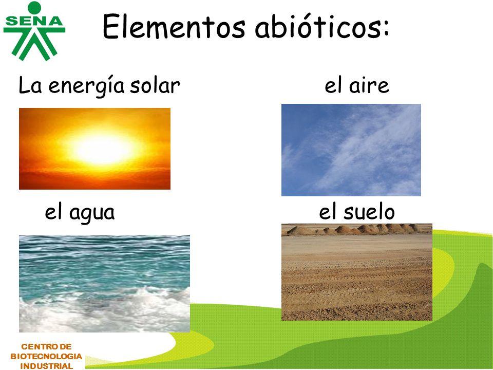 Elementos abióticos: La energía solar el aire el agua el suelo