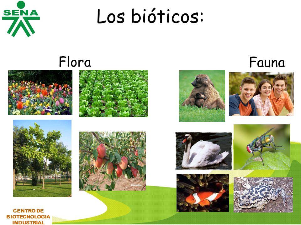 Los bióticos: Flora Fauna CENTRO DE BIOTECNOLOGIA INDUSTRIAL