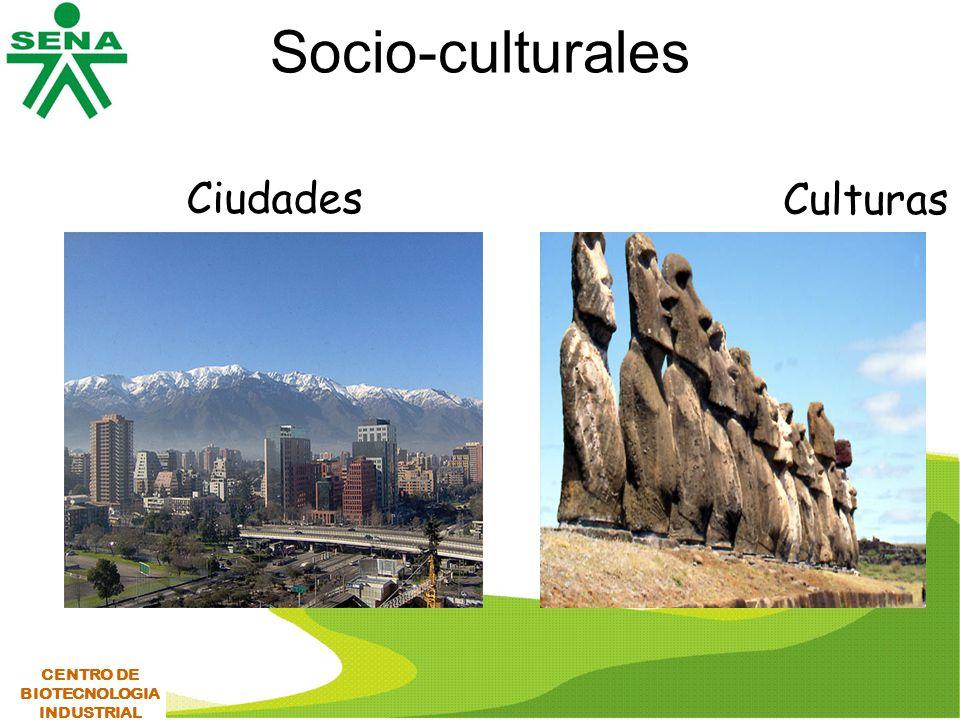 Socio-culturales Ciudades Culturas CENTRO DE BIOTECNOLOGIA INDUSTRIAL