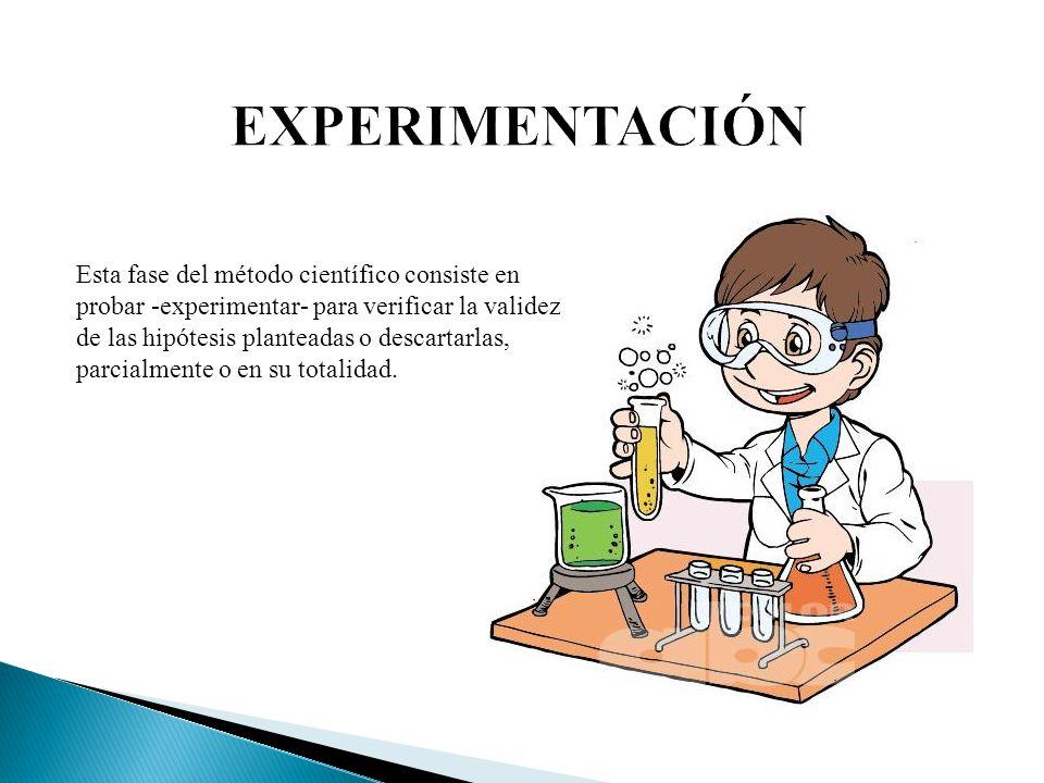 EXPERIMENTACIÓN