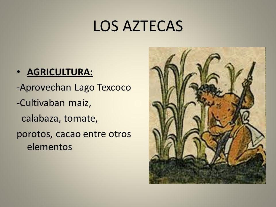 LOS AZTECAS AGRICULTURA: -Aprovechan Lago Texcoco -Cultivaban maíz,