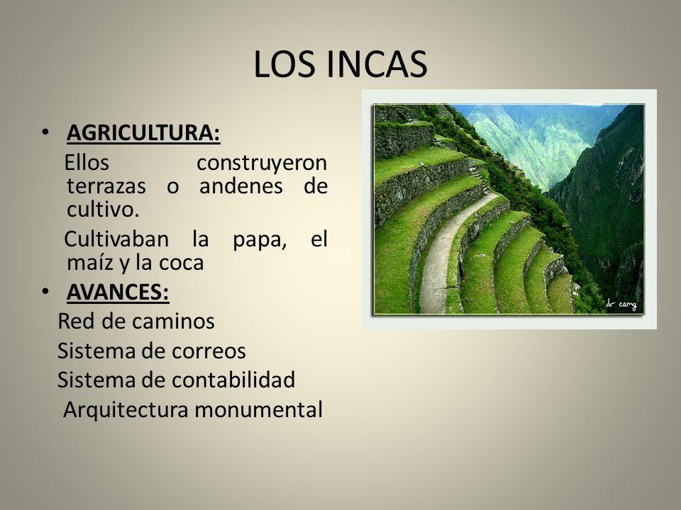 LOS INCAS AGRICULTURA: