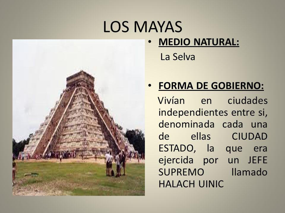 LOS MAYAS MEDIO NATURAL: La Selva FORMA DE GOBIERNO: