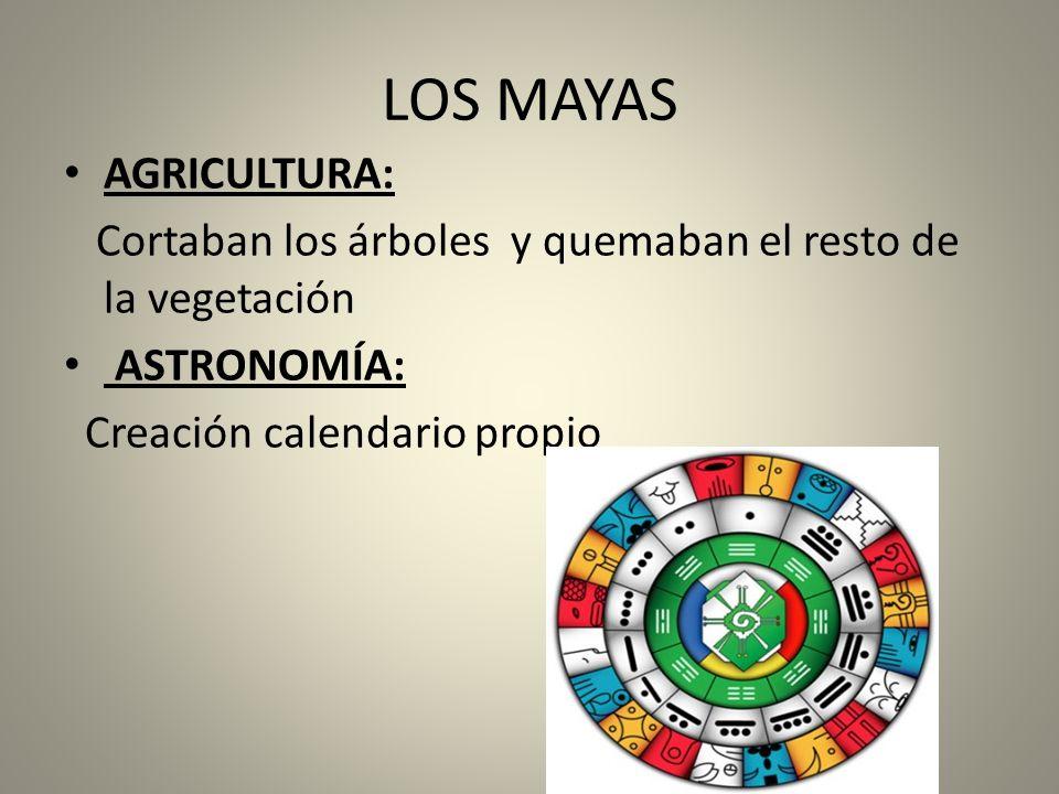 LOS MAYAS AGRICULTURA: