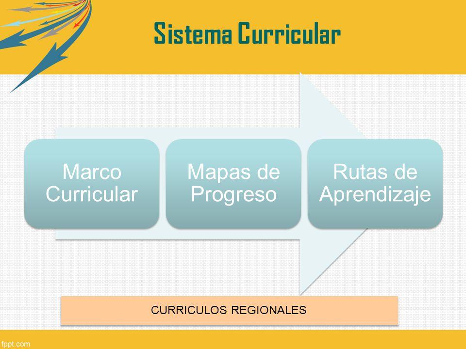 CURRICULOS REGIONALES