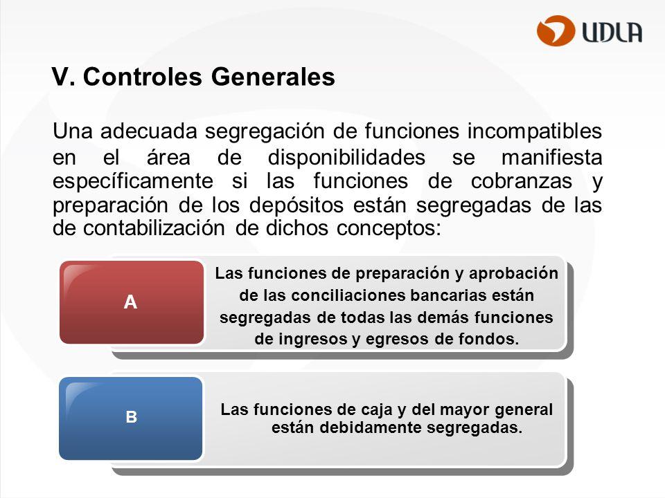 V. Controles Generales