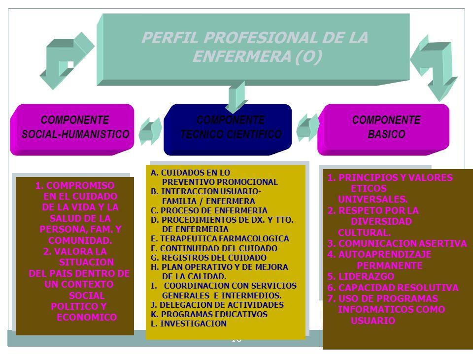 PERFIL PROFESIONAL DE LA