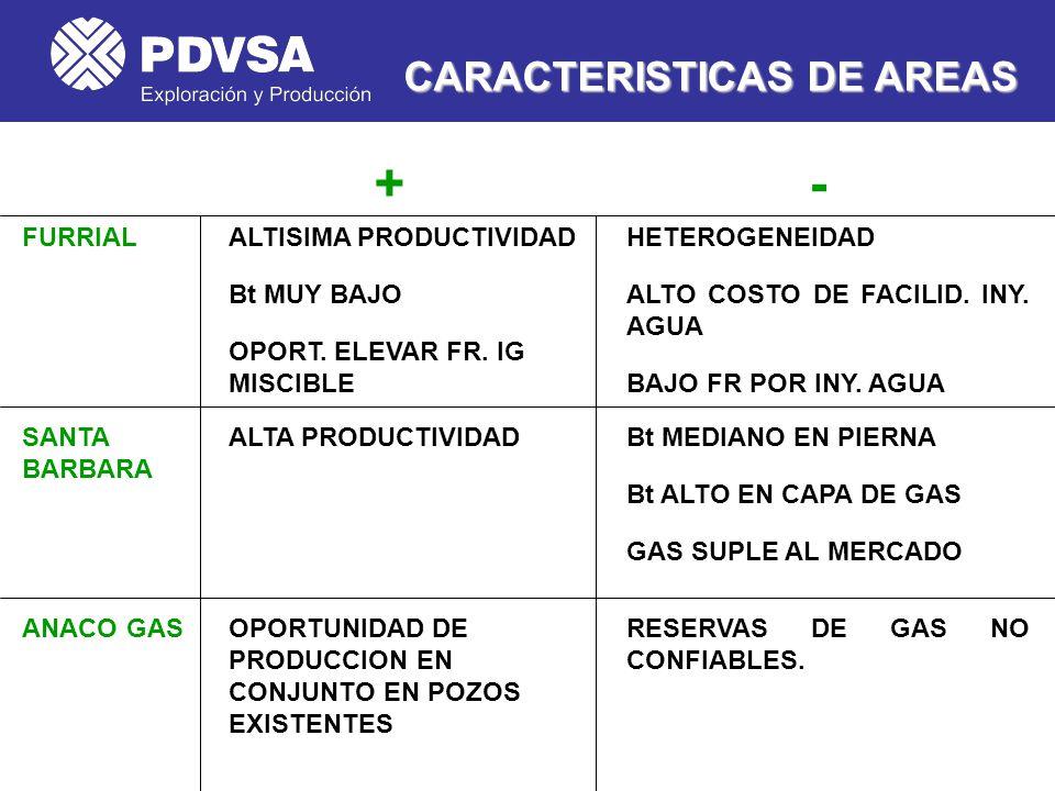 + - CARACTERISTICAS DE AREAS FURRIAL ALTISIMA PRODUCTIVIDAD