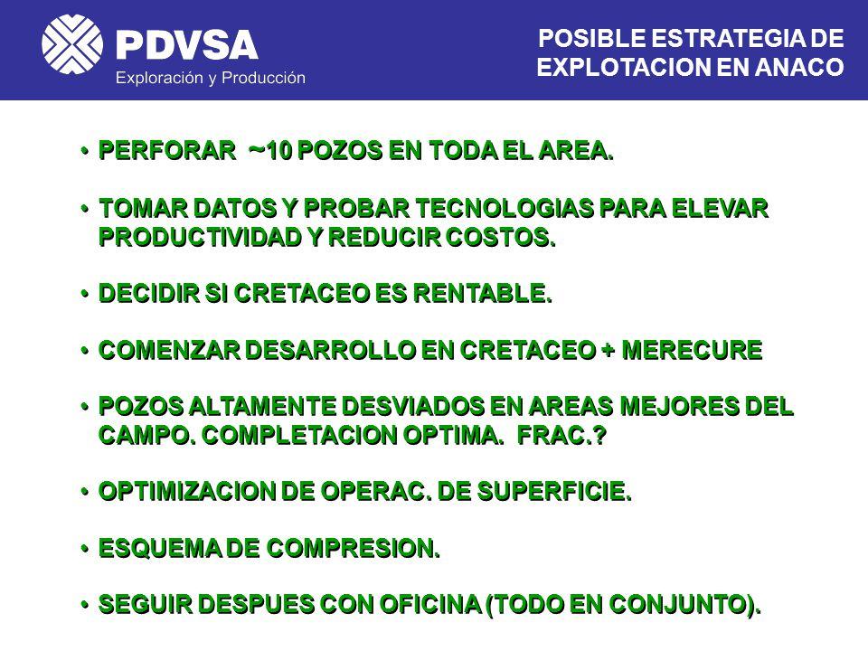 POSIBLE ESTRATEGIA DE EXPLOTACION EN ANACO
