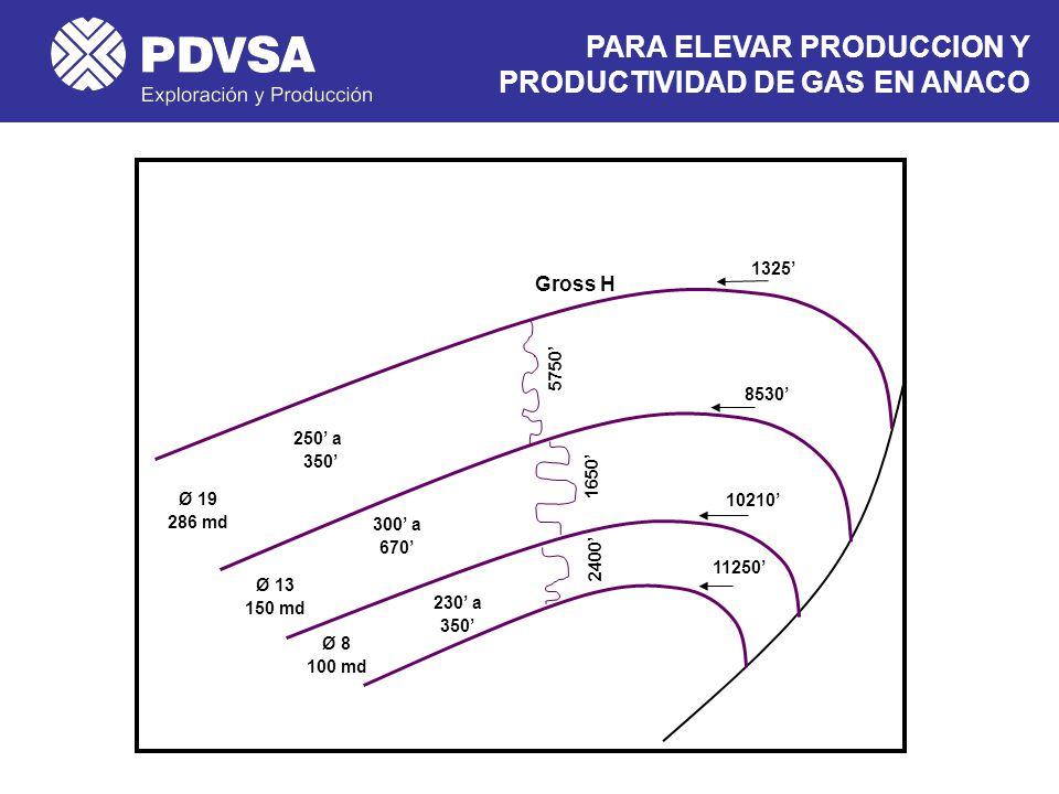 PARA ELEVAR PRODUCCION Y PRODUCTIVIDAD DE GAS EN ANACO