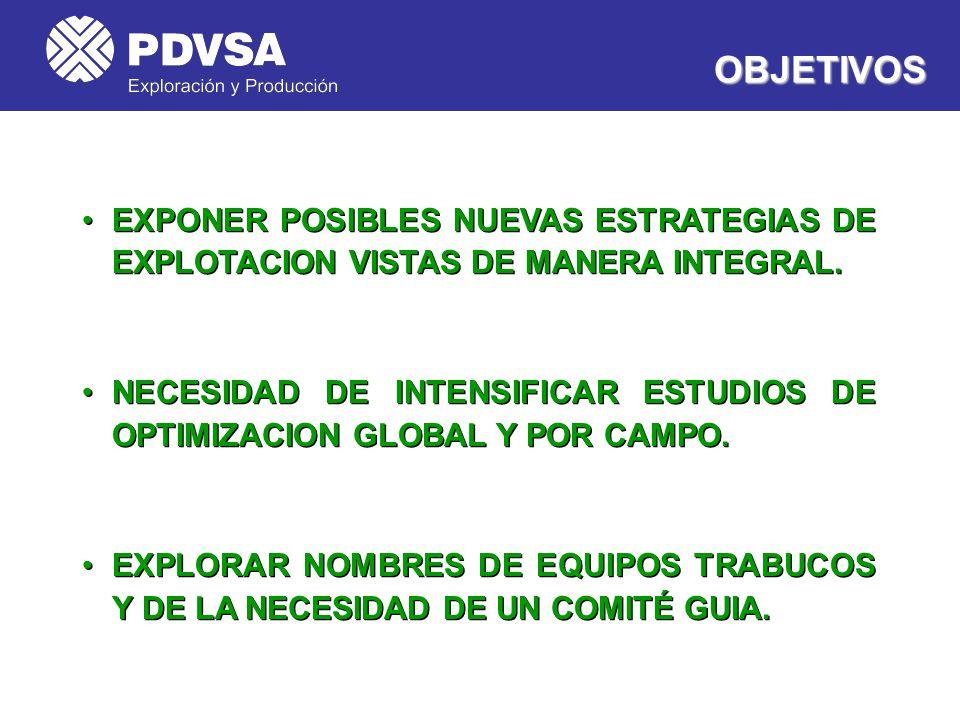 OBJETIVOS EXPONER POSIBLES NUEVAS ESTRATEGIAS DE EXPLOTACION VISTAS DE MANERA INTEGRAL.