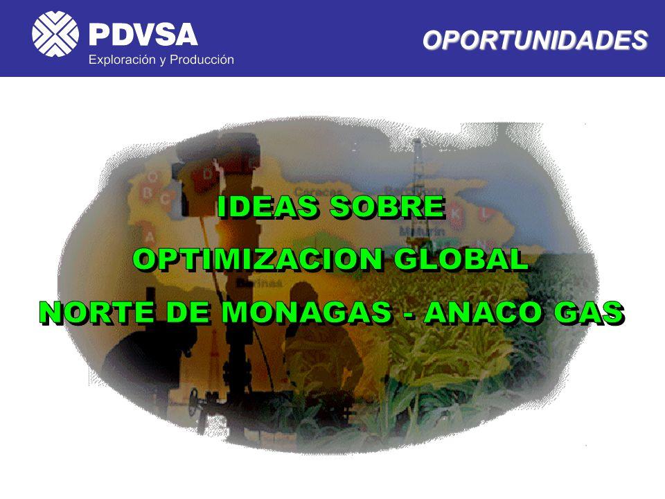 NORTE DE MONAGAS - ANACO GAS