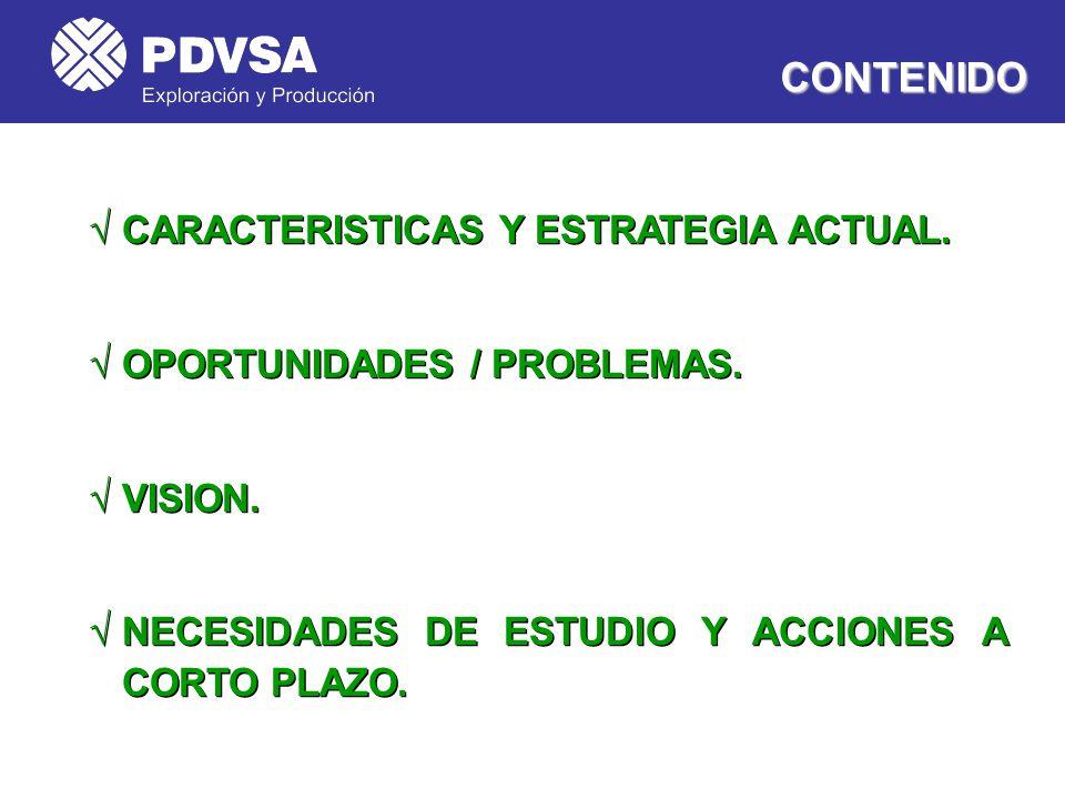 CONTENIDO CARACTERISTICAS Y ESTRATEGIA ACTUAL.