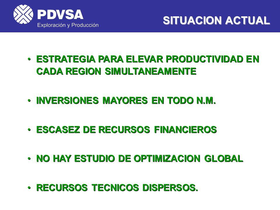 SITUACION ACTUAL ESTRATEGIA PARA ELEVAR PRODUCTIVIDAD EN CADA REGION SIMULTANEAMENTE. INVERSIONES MAYORES EN TODO N.M.