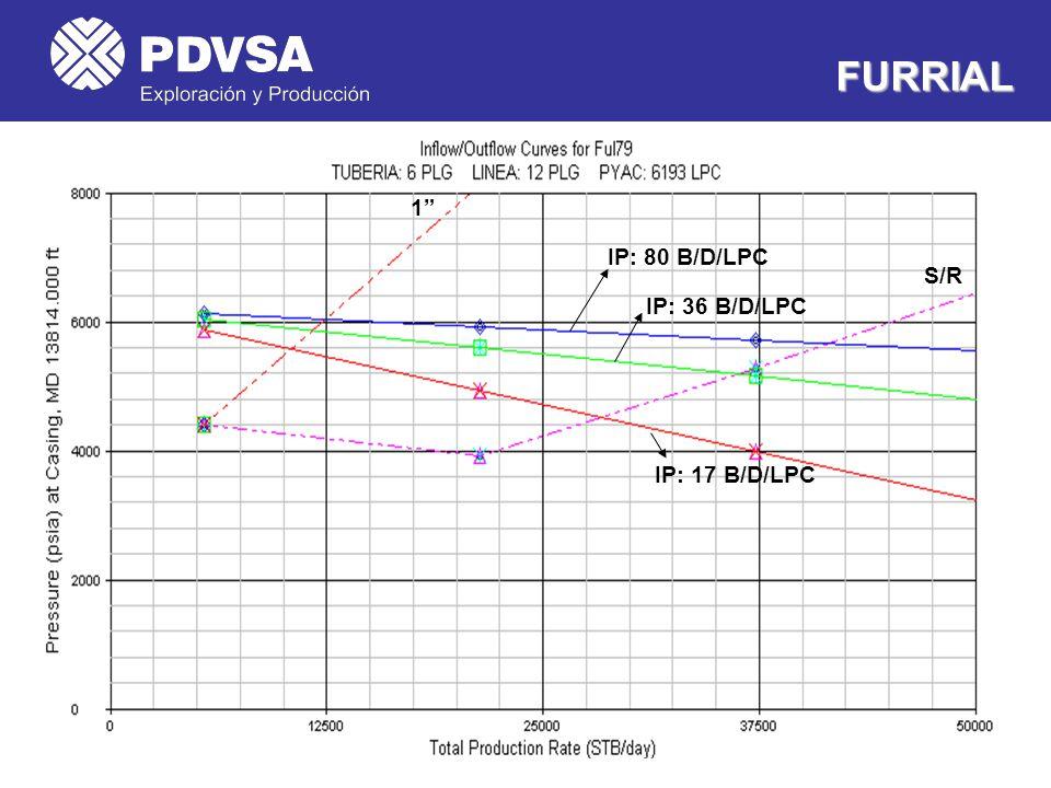 FURRIAL 1 IP: 80 B/D/LPC S/R IP: 36 B/D/LPC IP: 17 B/D/LPC