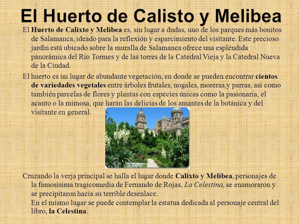 Salamanca salamanca ppt descargar - Jardin de calisto y melibea salamanca ...