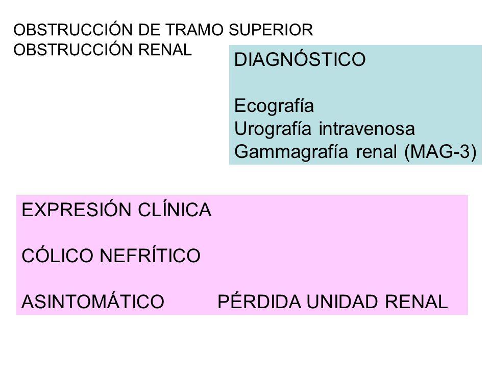 Urografía intravenosa Gammagrafía renal (MAG-3)