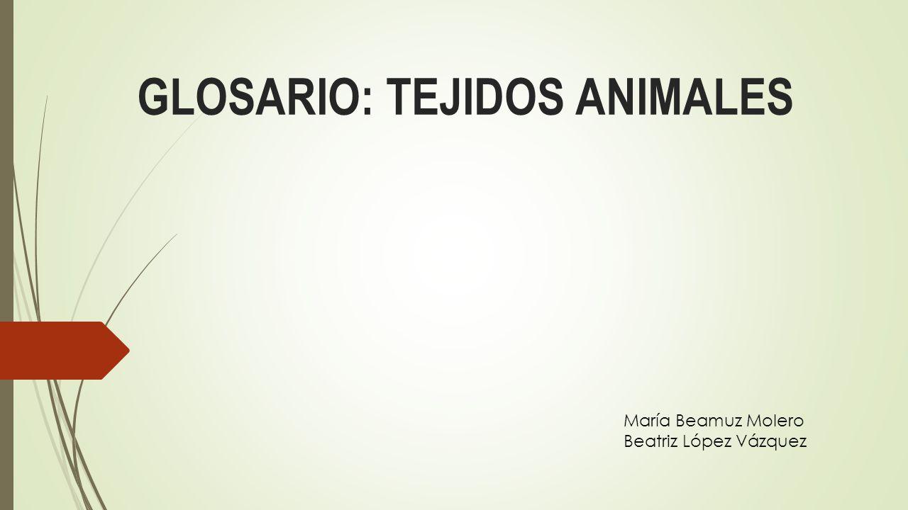GLOSARIO: TEJIDOS ANIMALES