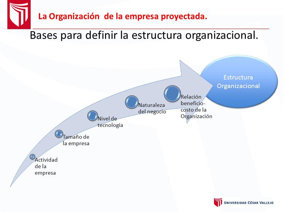 Bases para definir la estructura organizacional.