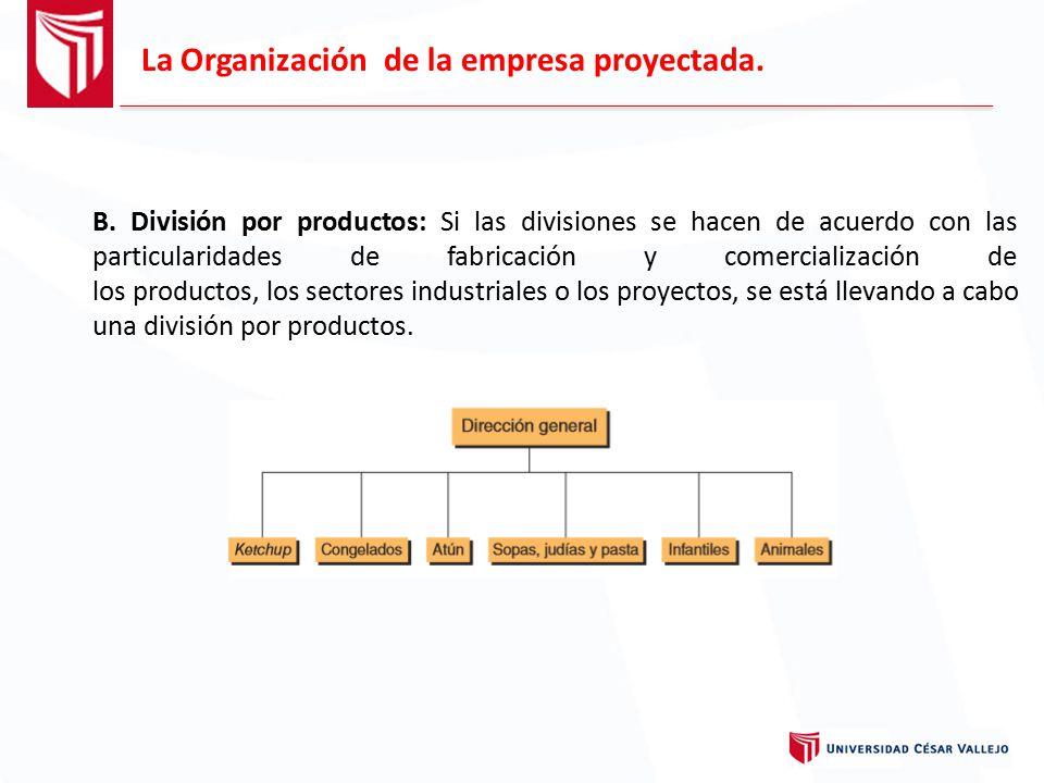 La Organización de la empresa proyectada.