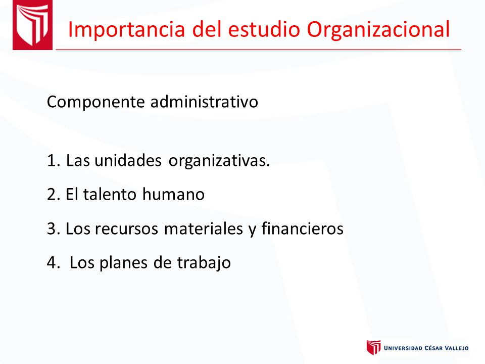 Importancia del estudio Organizacional
