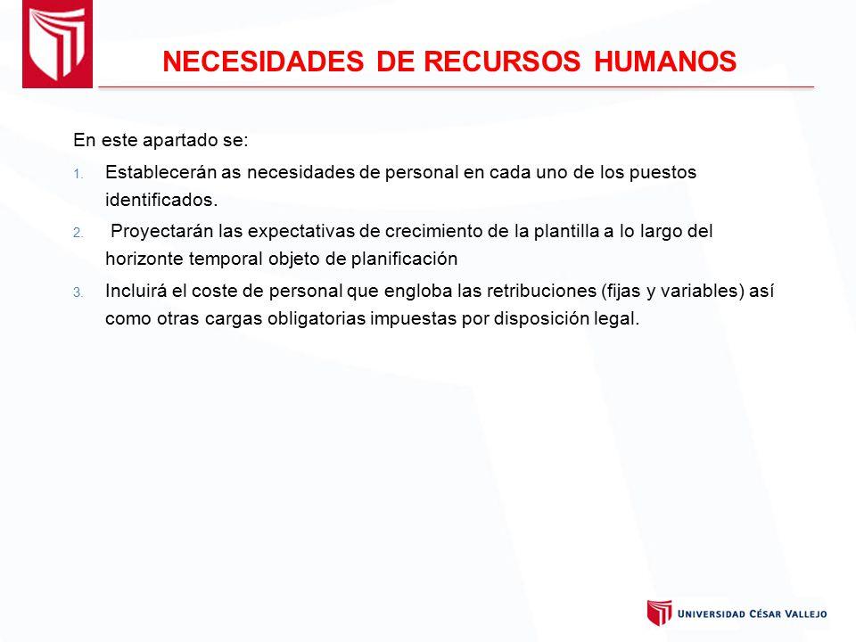 NECESIDADES DE RECURSOS HUMANOS