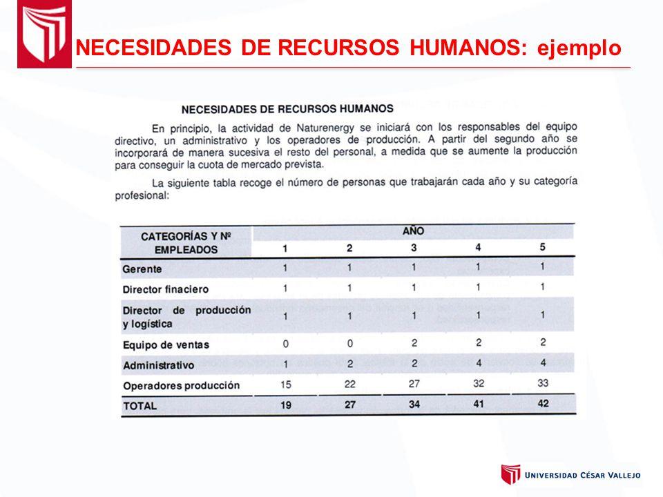 NECESIDADES DE RECURSOS HUMANOS: ejemplo